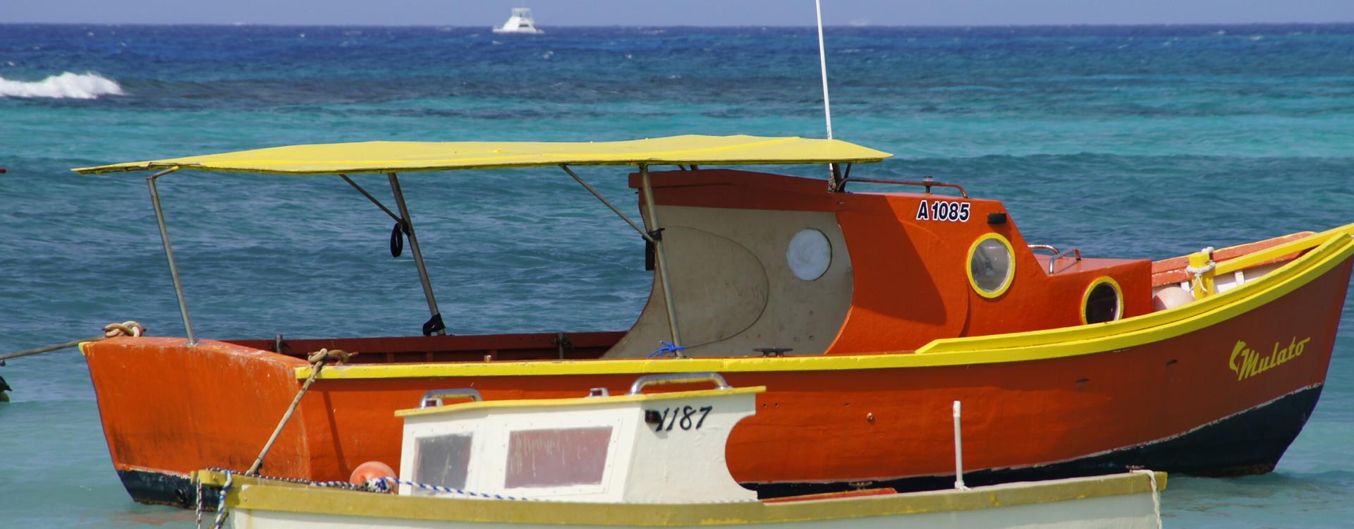 Colorful Aruba
